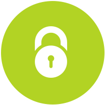 Advance Security Icon