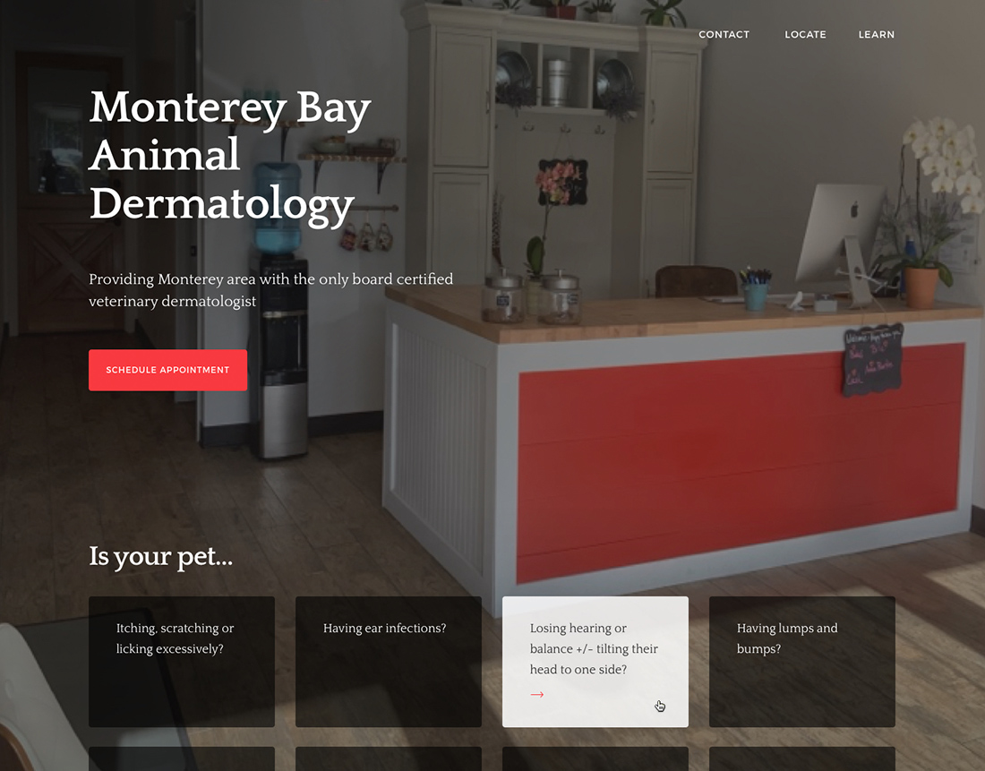 monterey-bay-animal-dermatology-webdesign-casestudy-1