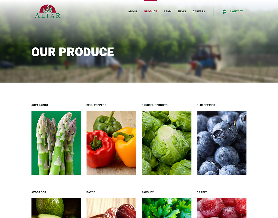 harvesting-a-fresh-new-site-for-one-of-the-world-s-top-veggie-producers-3